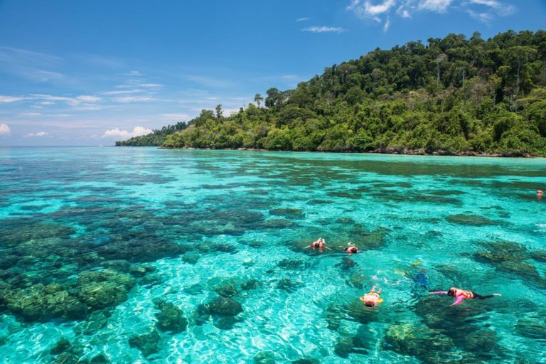 Koh Rok & Haa Islas 🏝 (El mejor snorkeling)